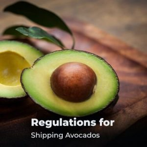 Regulations for Shipping Avocados