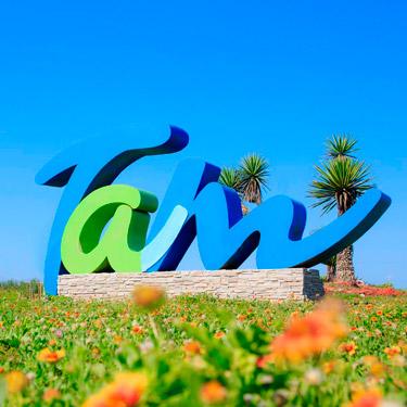 Transporte-Transfronterizo-de-Tamaulipas