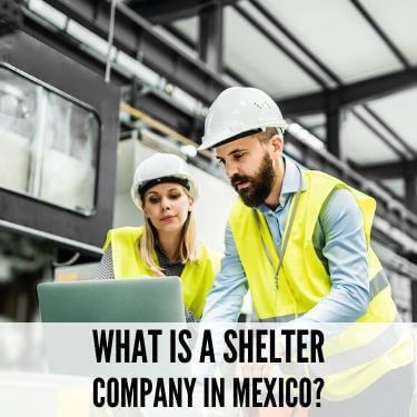 What Is A Shelter Company In Mexico