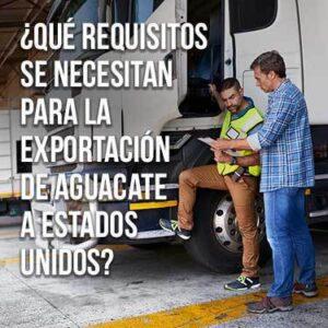 Qué requisitos se necesitan para la exportación de aguacate a estados unidos